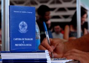 Trabalho e Emprego em 2013 no Brasil (II): distribuição dosocupados